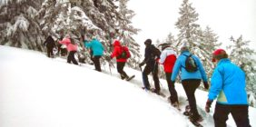 Góry zimą – weekend trekkingowo-szkoleniowy w Beskidzie Wyspowym!